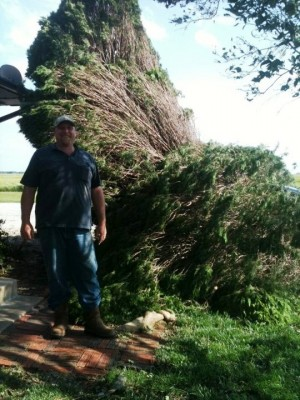 Dave Breedlove stands by an uprooted tree on his property. And yes, still smiling!