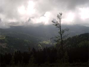 The AMF helped scientists collect data about orographic precipitation, which is common in the Black Forest, particularly in the summertime.