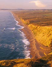 Image - Point Reyes Beach