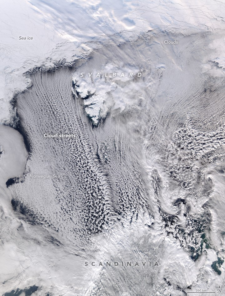 Cloud streets over Norwegian Sea